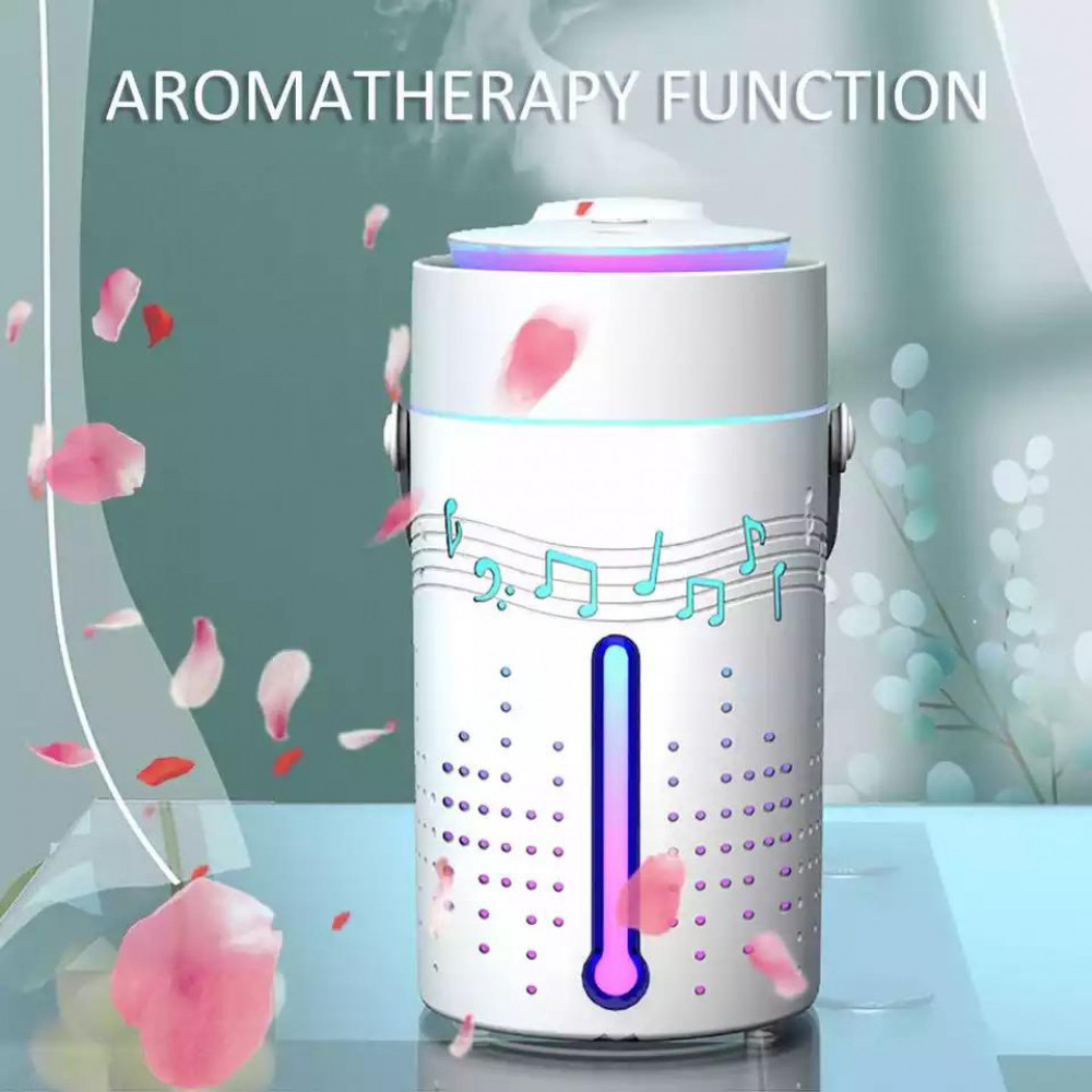 Electric fan and bluetooth speaker