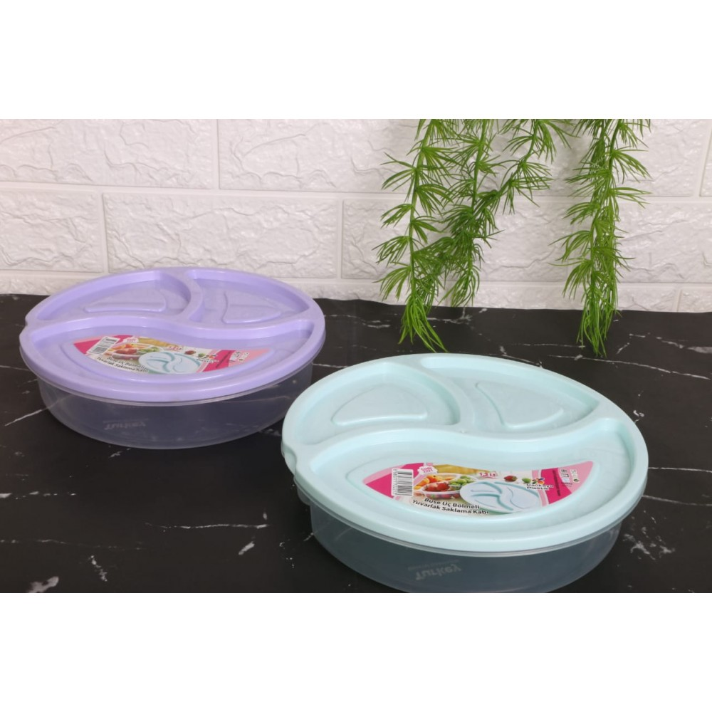 Divided plastic plate